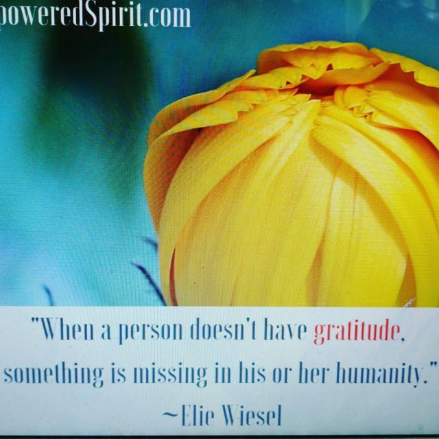Keep gratitude in your heart and it will help leadhellip