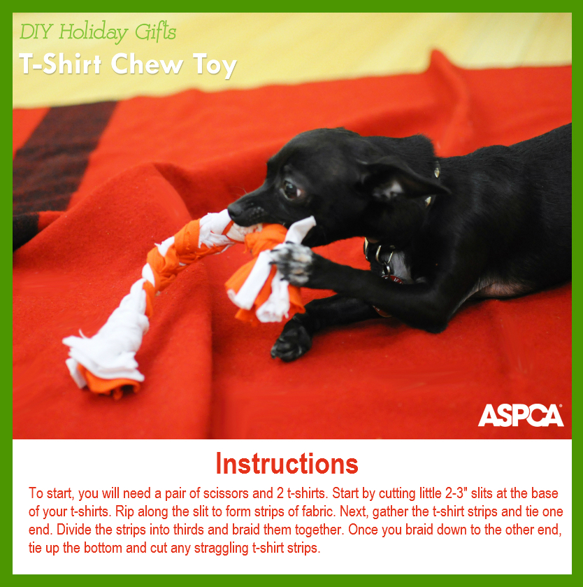 A holiday gift guide for pets plus a way to make a difference in the thats why im thrilled to announce that the aspca has put together a gift guide for pets and pet lovers including several fun do it yourself gifts for solutioingenieria Choice Image
